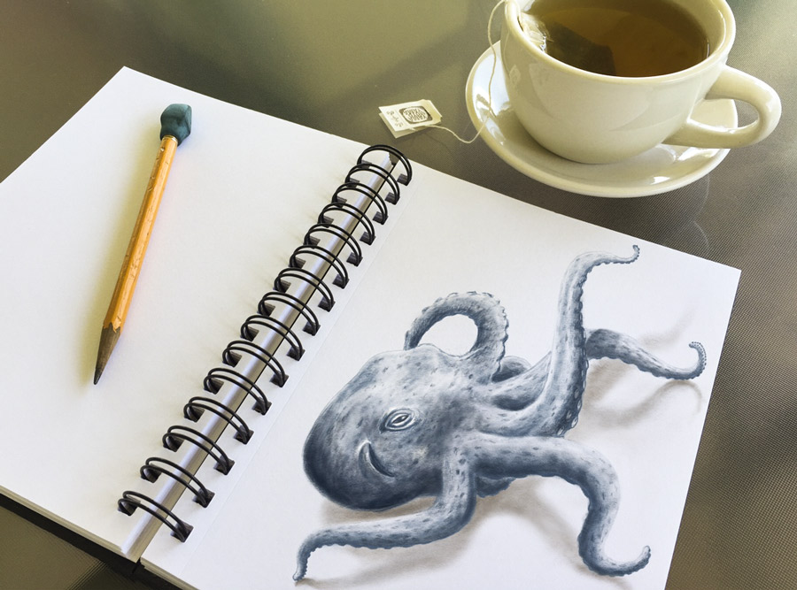 sketchbook octopus carltonarts